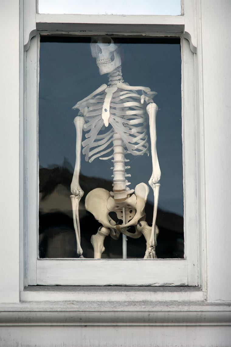 Skeleton in the window