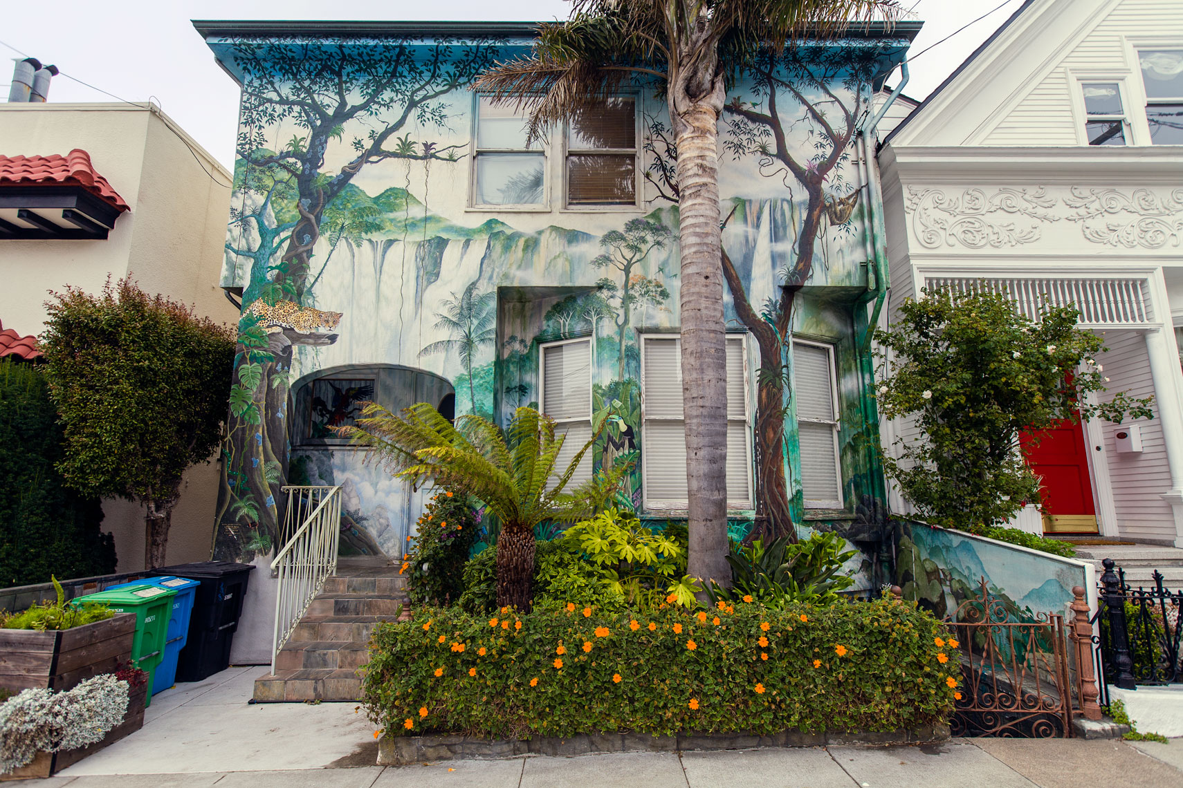 Botanical painted houses,San Francisco, California,