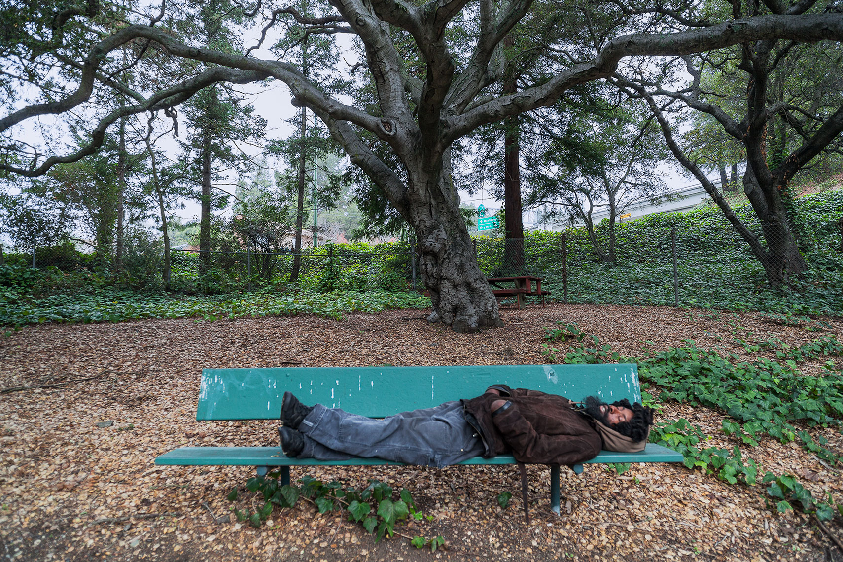 OaklandPark bench homeless sleeper, California, homeless, urban