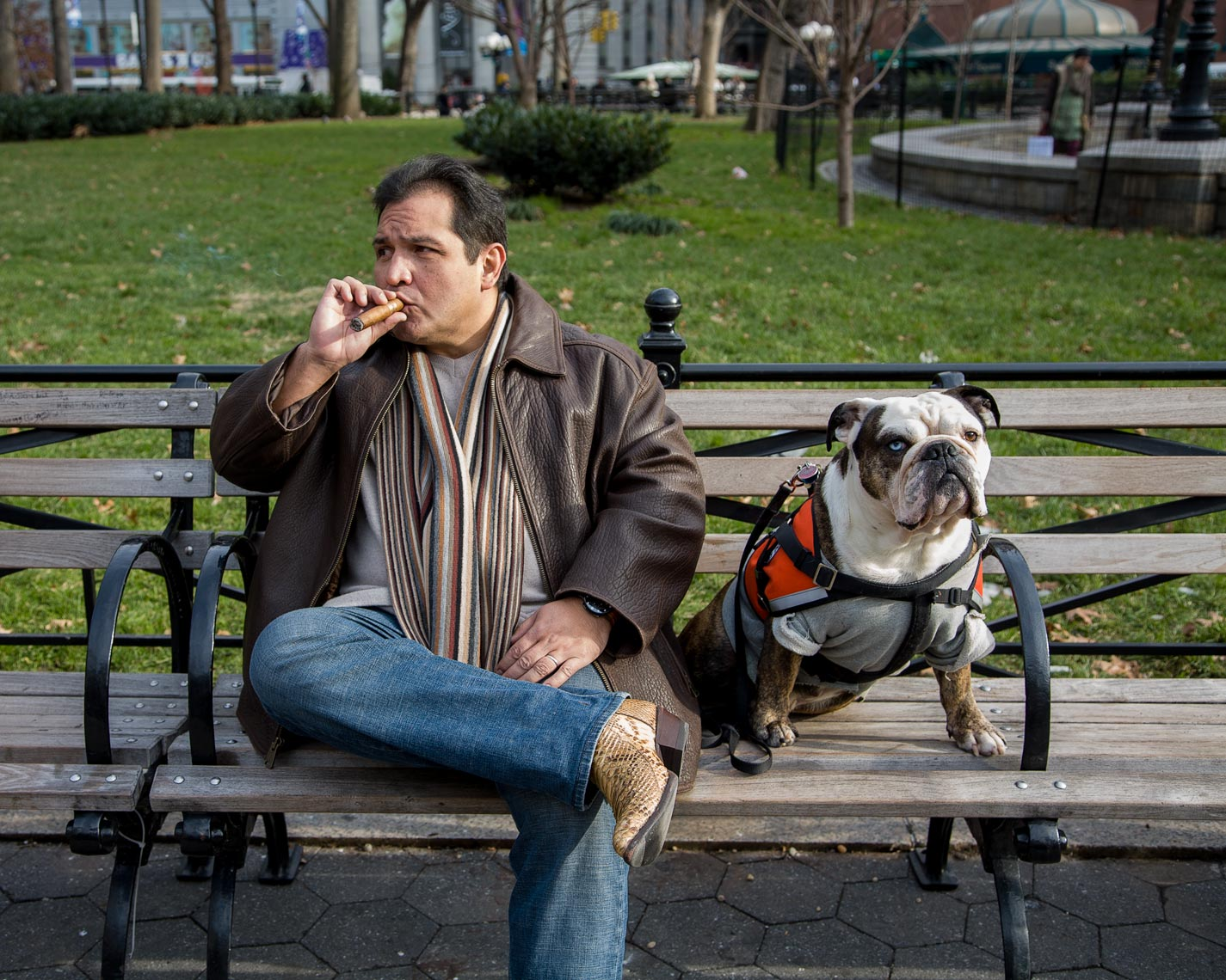 Bulldog and cigar man